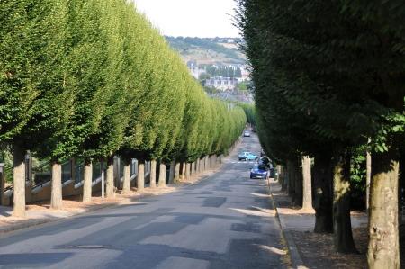 Avenue Des Amoureux Giverny News