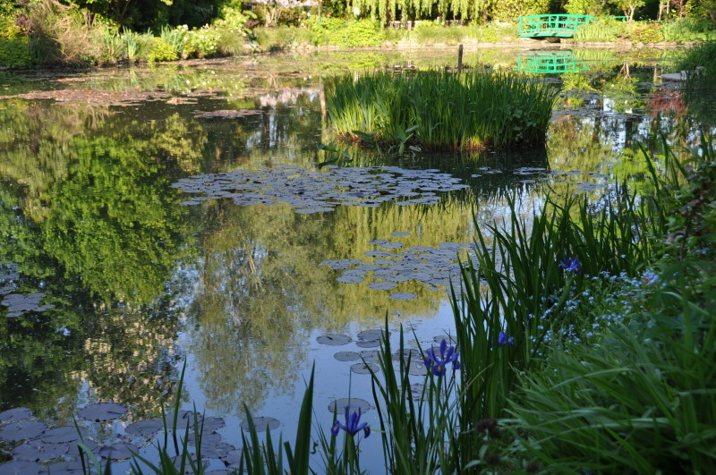 Giverny giverny news for Les arbres du jardin
