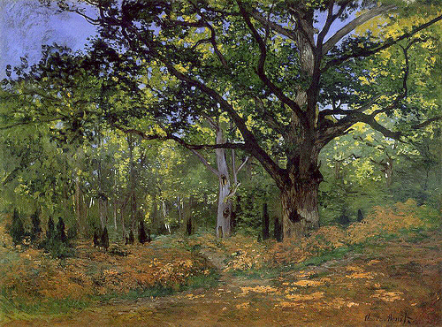 Un Chêne au Bas-Bréau, Claude Monet, 1865, Métropolitan Museum of Art, New York