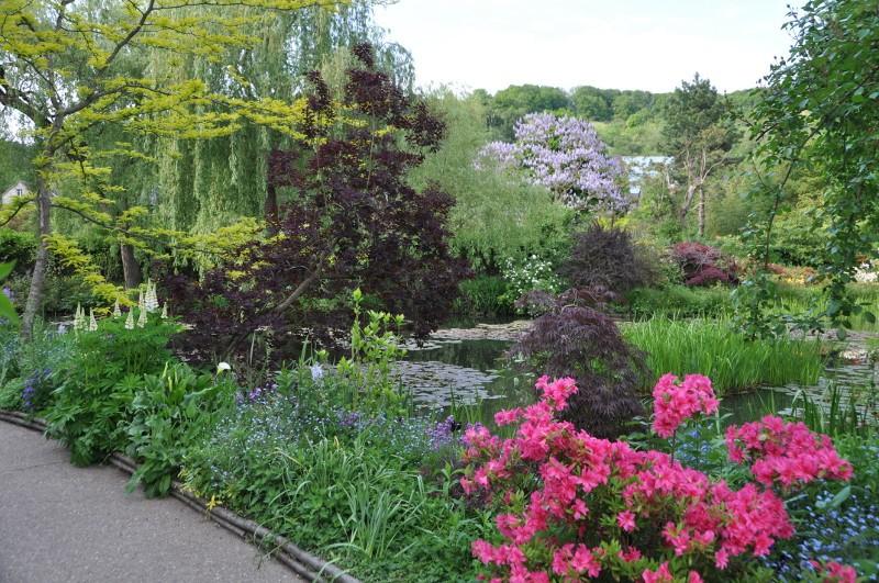 Jardin d'eau de Monet