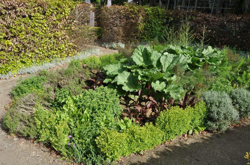 jardin-aromatiques-mdig