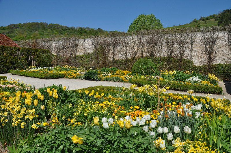 jardin-jaune-mdig-2