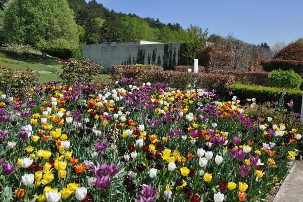 jardin du musée des impressionnismes Giverny