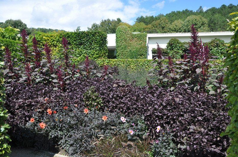 jardin-noir-giverny