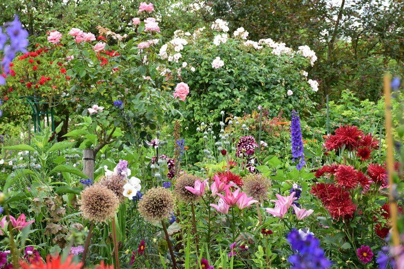 Massif de fleurs d'été à Giverny