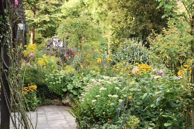 Mini jardin à Giverny