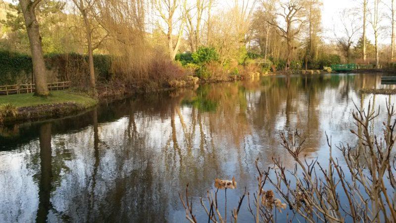 Giverny Bassin de Monet en janvier