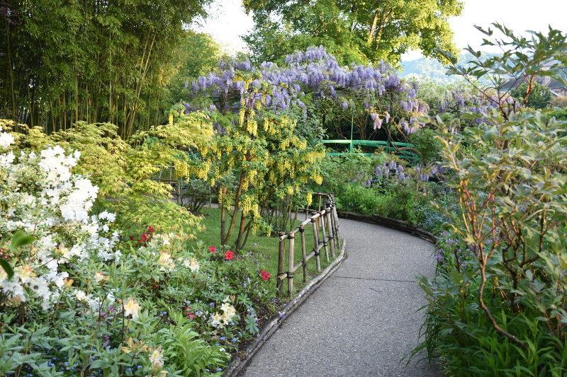 Le jardin japonais de Monet