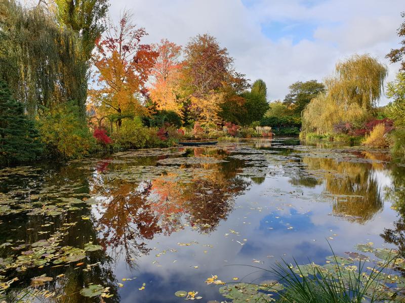Giverny, le bassin en automne
