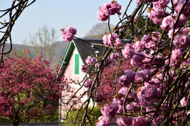 La maison de Monet vue de dehors
