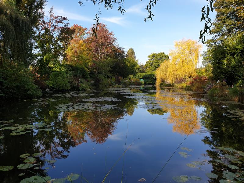 Le bassin de Monet en octobre