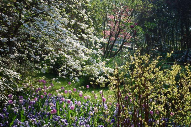Pointillisme de printemps giverny news for Point d eau dans le jardin